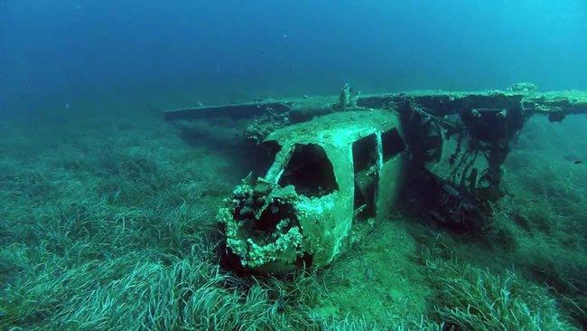 Immersione Sub Isola Elba
